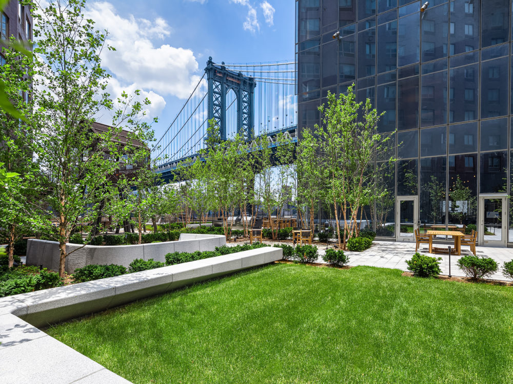 View of One Manhattan Square condominiums and Manhattan Bridge from a small park with grass, trees and stone benches.
