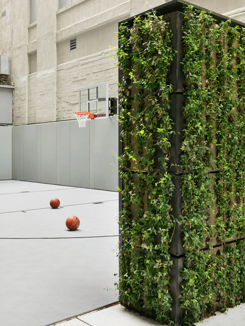 Exterior view of 70 Charlton condominiums sports court in New York City. Has basketball court and vined walls.