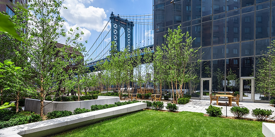 Close up of exterior garden at One Manhattan Square in NYC. Grass lawn with stone bench, trees and views of Manhattan Bridge.