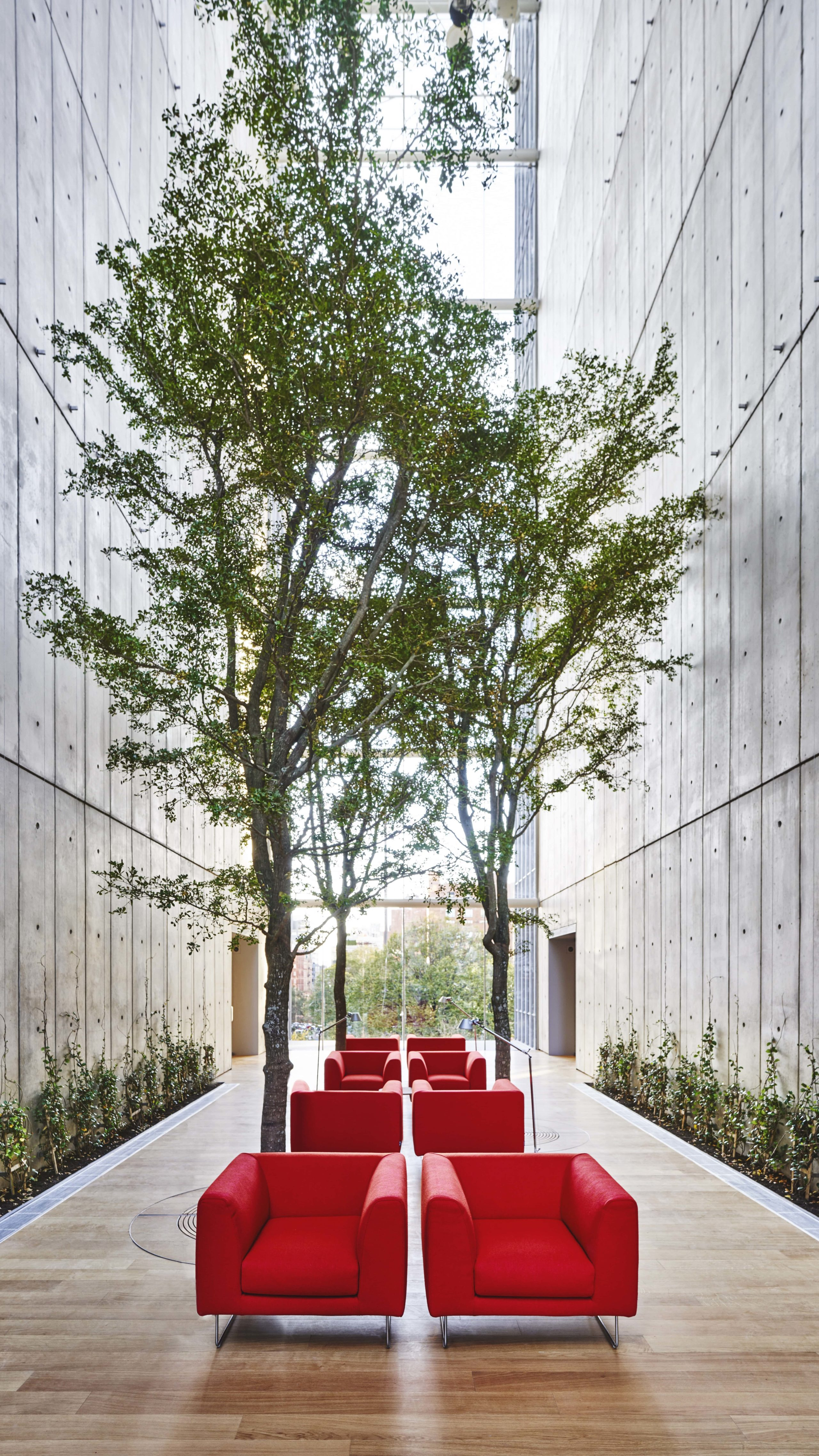 Exterior view of 565 Broome condominiums conservatory in New York City. Has red chairs in the middle and decorative trees.
